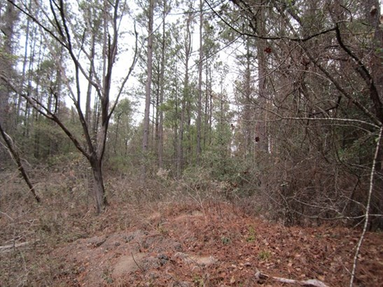 Residential Building Lot - Lizella, GA (photo 3)