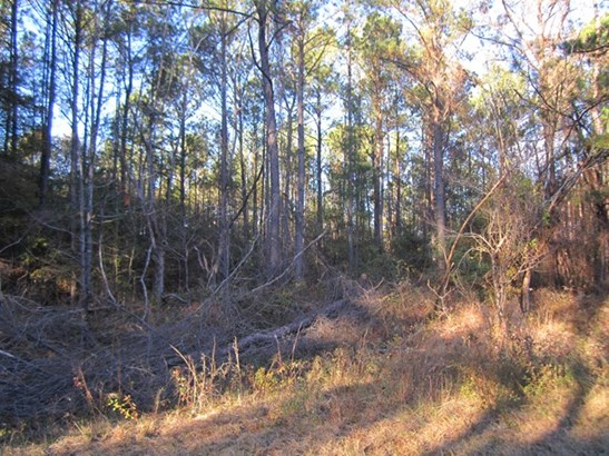 Residential Building Lot - Lizella, GA (photo 4)