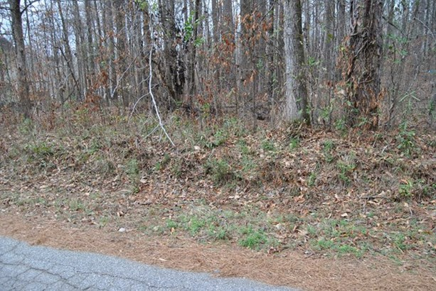Residential Building Lot - Jackson, GA (photo 3)