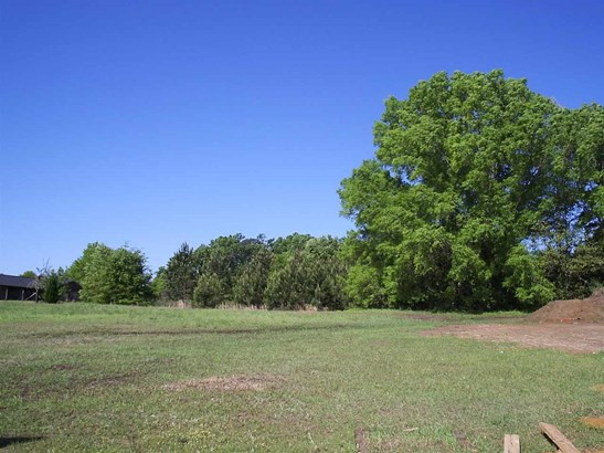 Residential Lot - Bonaire, GA (photo 2)
