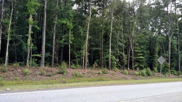 Residential Building Lot - Gray, GA (photo 1)