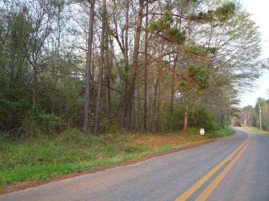 Land/Farm - Juliette, GA (photo 2)