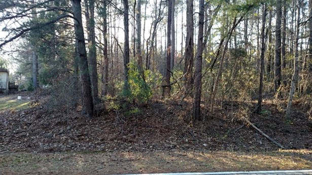 Residential Building Lot - Musella, GA (photo 1)