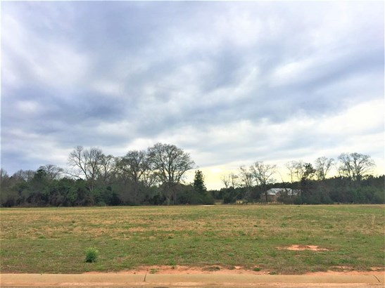 Residential Lot - Fort Valley, GA (photo 2)