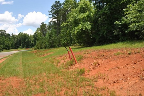 Land/Farm - Forsyth, GA (photo 2)