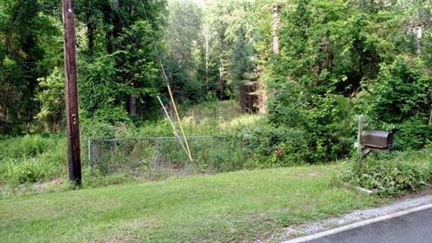Land/Farm - Macon, GA (photo 2)