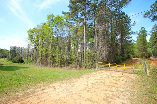 Unimproved - Perry, GA (photo 3)