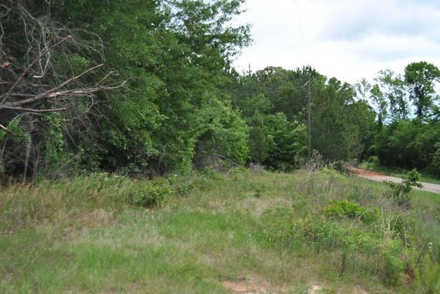 Land/Farm - Dry Branch, GA (photo 1)