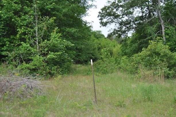 Land/Farm - Dry Branch, GA (photo 4)