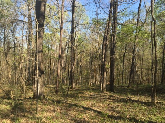 Land/Farm - Macon, GA (photo 1)