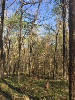 Land/Farm - Macon, GA (photo 3)