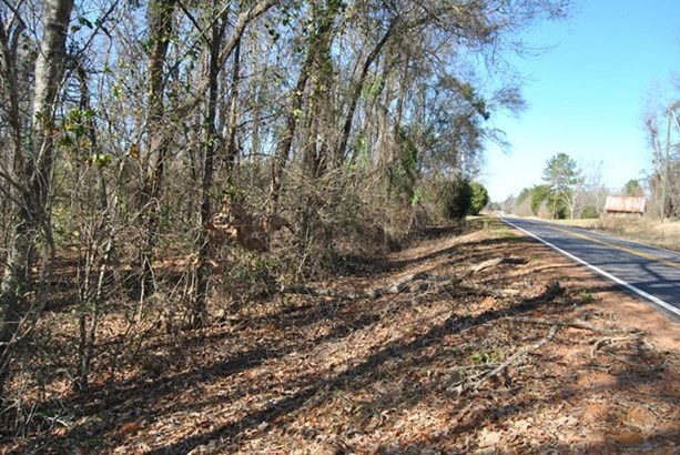 Residential Building Lot - McIntyre, GA (photo 3)