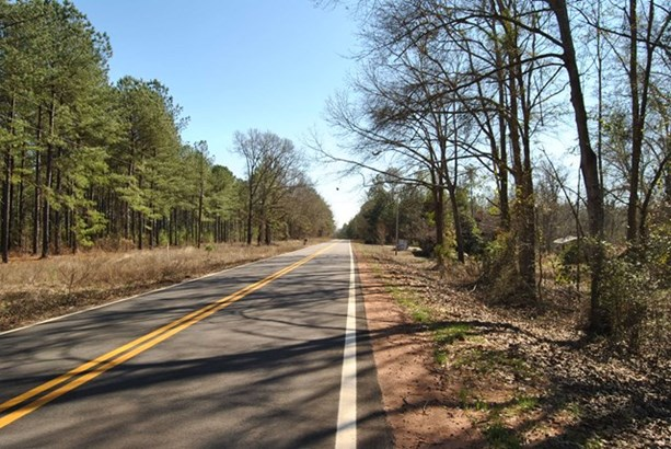 Residential Building Lot - McIntyre, GA (photo 5)