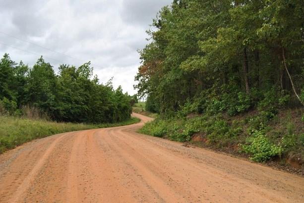 Land/Farm - McIntyre, GA