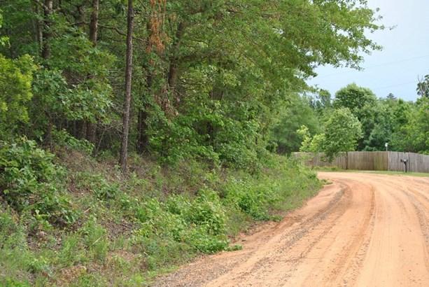Land/Farm - McIntyre, GA (photo 3)