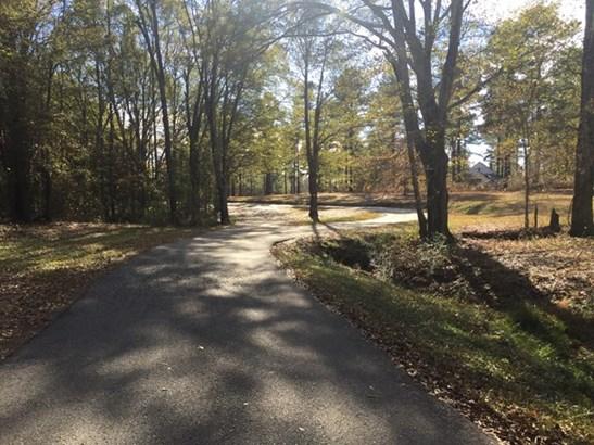 Land/Farm - Barnesville, GA (photo 3)