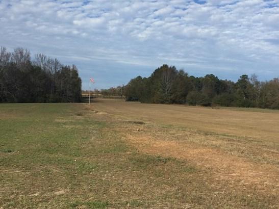 Land/Farm - Barnesville, GA (photo 4)