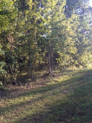 Residential Building Lot - Gray, GA (photo 2)