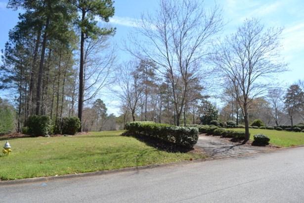 Residential Building Lot - Macon, GA (photo 2)
