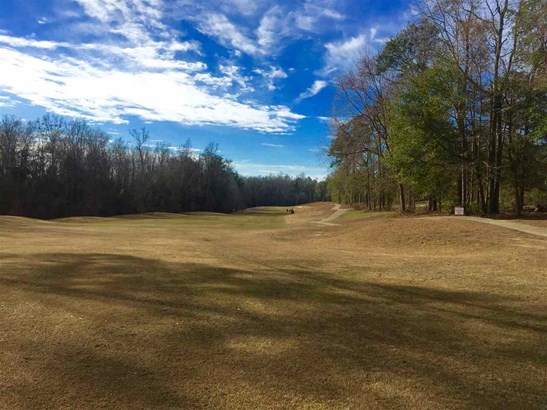 Residential Lot - Warner Robins, GA (photo 1)