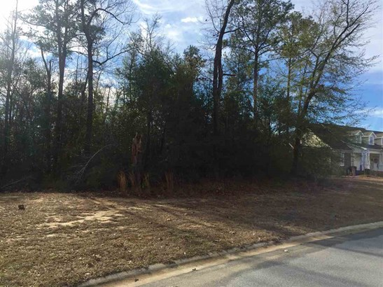 Residential Lot - Warner Robins, GA (photo 4)