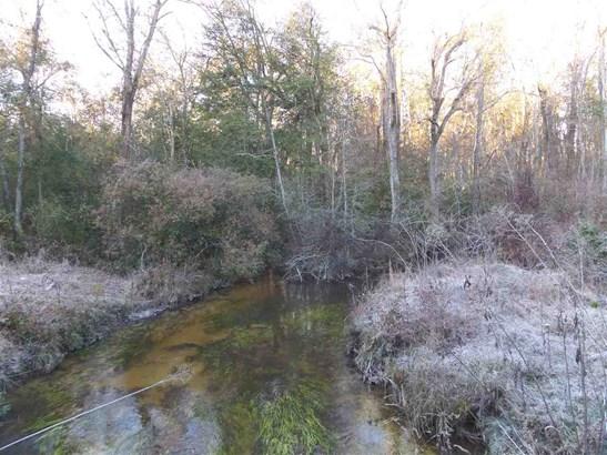 Unimproved - Byron, GA (photo 2)
