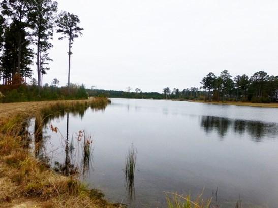 Land/Farm - Toomsboro, GA (photo 3)