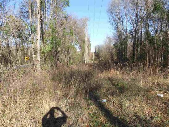 Unimproved - Oglethorpe, GA (photo 1)