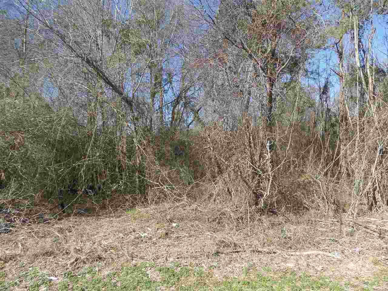 Unimproved - Oglethorpe, GA (photo 2)