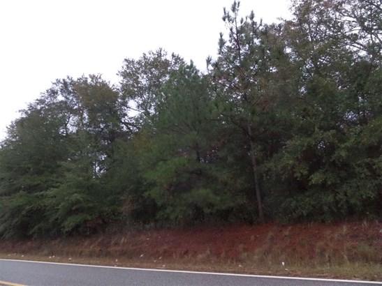 Unimproved - Oglethorpe, GA (photo 5)