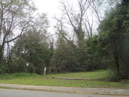 Residential Building Lot - Macon, GA (photo 1)