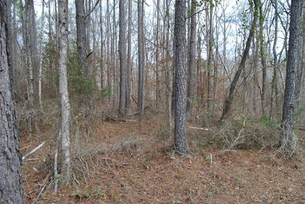 Residential Building Lot - Jackson, GA (photo 1)
