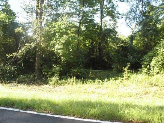 Unimproved - Macon, GA (photo 3)