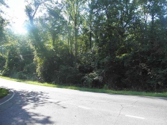 Unimproved - Macon, GA (photo 4)