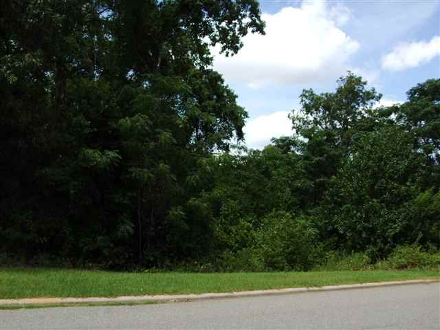 Residential Lot - Warner Robins, GA (photo 5)
