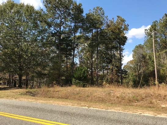 Residential Lot - Knoxville, GA (photo 2)