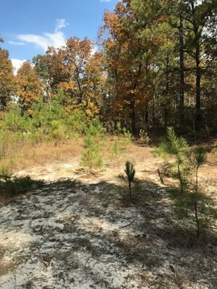 Residential Lot - Knoxville, GA (photo 3)
