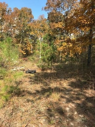 Residential Lot - Knoxville, GA (photo 4)