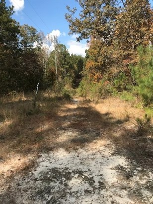 Residential Lot - Knoxville, GA (photo 5)
