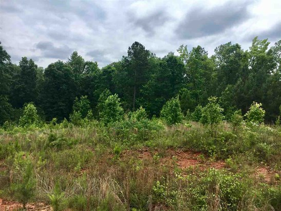 Residential Lot - See Remarks, GA (photo 2)