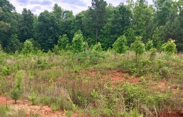 Residential Lot - See Remarks, GA (photo 3)
