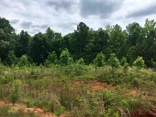 Residential Lot - See Remarks, GA (photo 4)