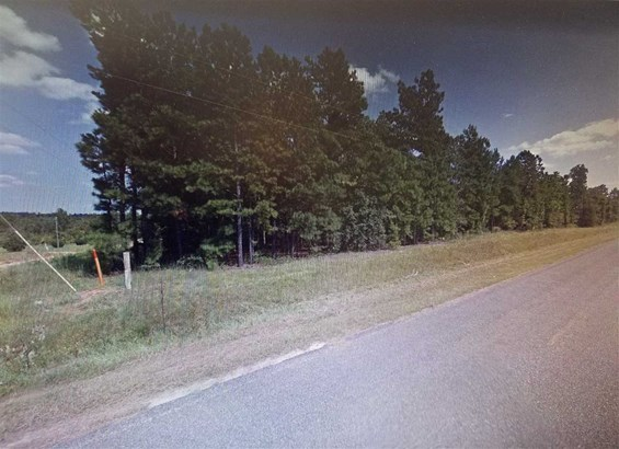 Unimproved - Roberta, GA (photo 4)