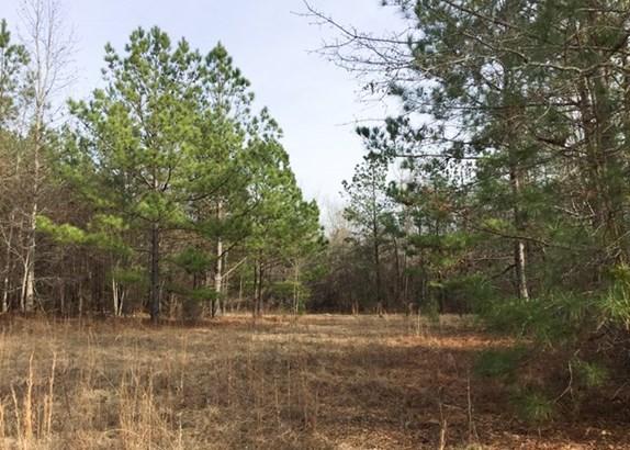 Land/Farm - Irwinton, GA (photo 1)