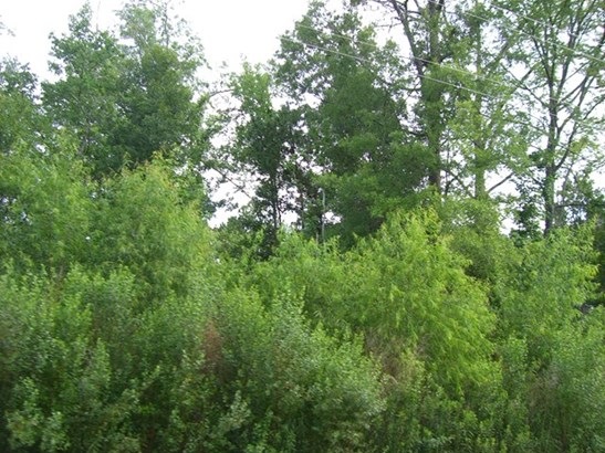 Unimproved Commercial - Gray, GA (photo 4)
