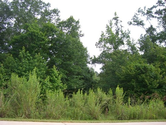 Unimproved Commercial - Gray, GA (photo 5)