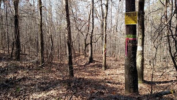 Land/Farm - Monticello, GA (photo 1)