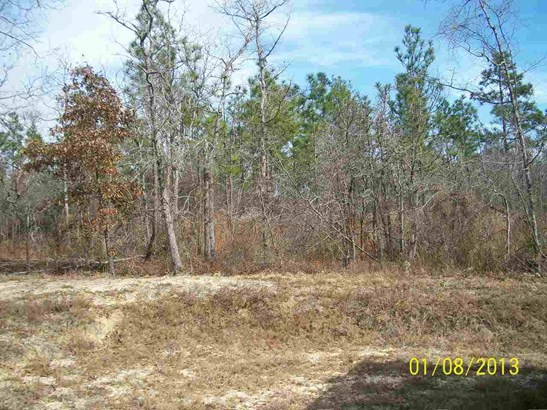 Residential Lot - Hawkinsville, GA (photo 1)