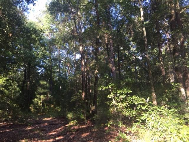 Residential Building Lot - Lizella, GA (photo 1)