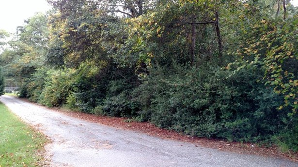 Residential Building Lot - Roberta, GA (photo 1)